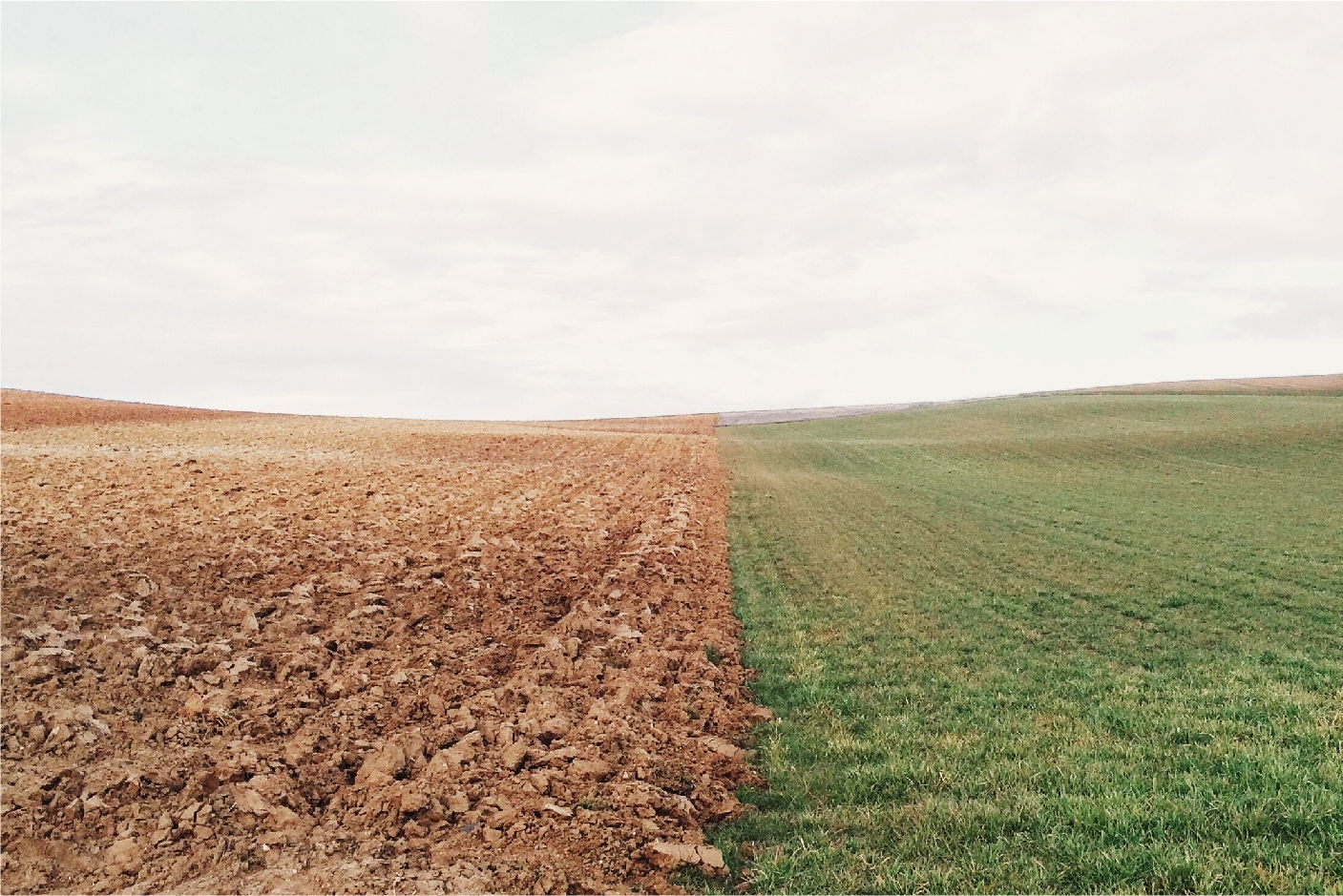 Drought Impacts III: Agricultural Systems